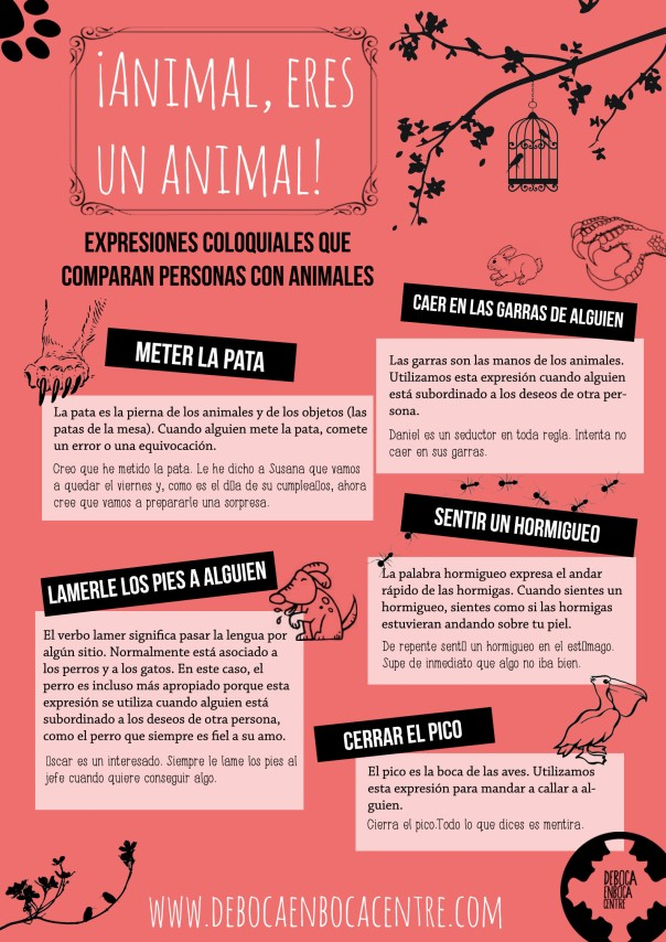 animal eres un animal copy